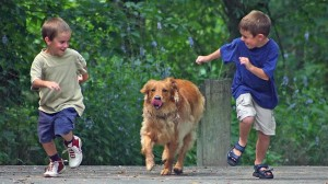 kids playing with dog - sage child care