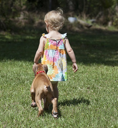 children and dogs - sage child care